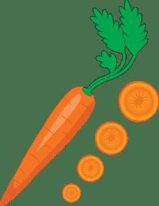 Juizs wortel